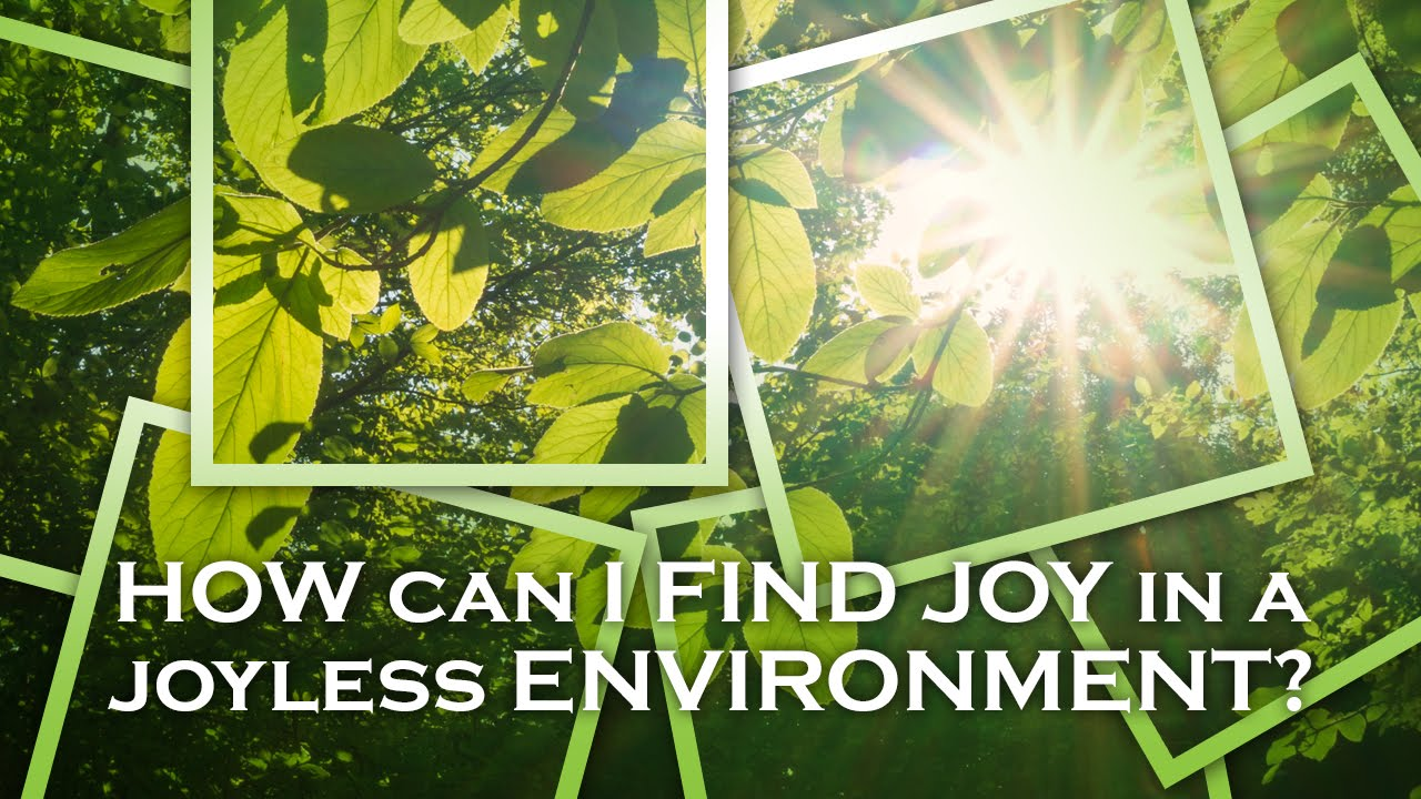 How Can I Find Joy in a Joyless Environment?