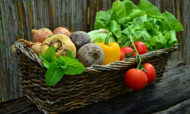 The Bible and Vegetarianism